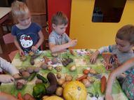 Te rudenī turpinās darbs ar dārzeņiem. Top dārzeņu brīnumi!