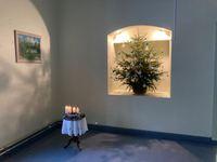 Ziemassvētku gaidīšanas laiks