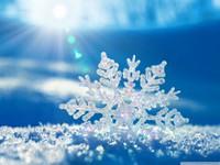 10.februārī - Sniega diena!