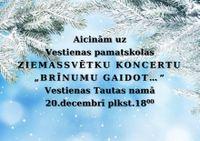 """20.decembrī plkst. 18:00 Ziemassvētku koncerts """"Brīnumu gaidot..."""" Vestienas Tautas namā"""